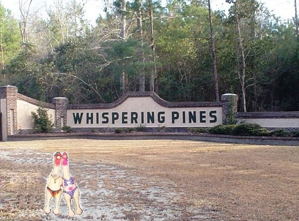 Whispering pines nudist resort and campground